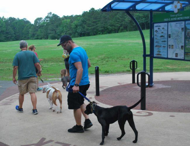 , Dynamic Dogs of North Carolina