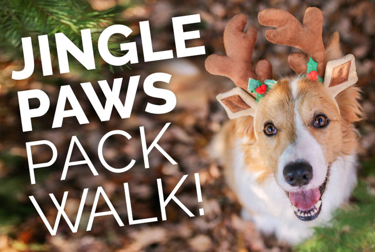 3rd Annual Jingle Paws Pack Walk In Historic Oakwood